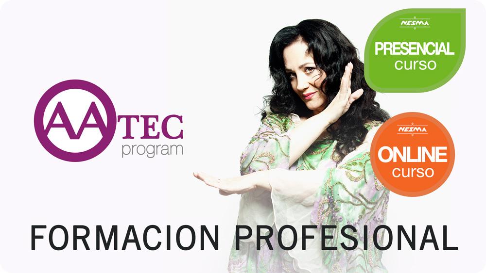 AATEC Program